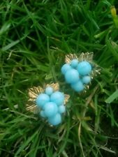 Turquoise Glass Beaded Clip On Earrings