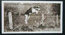 FOXHOUND    New Forest Foxhounds  Vintage  Photo Card   EXC