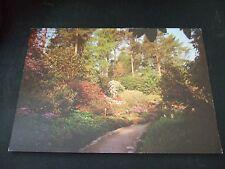 Postcard.The Peat Banks, Inverewe Garden. Unposted.