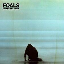 FOALS - WHAT WENT DOWN  CD NEU