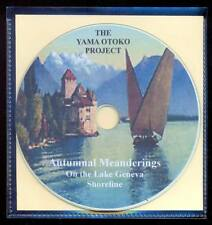 CD The Yama Otoko Project : Autumnal  Meanderings 20 titres 2017 Ambient Electro