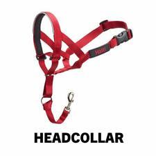 CoA Halti Headcollar Size 1 Red Dog Puppy Lead Walk Train Harness Collar 31-40cm