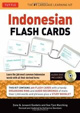 Indonesian Flash Cards: Learn the 300 most common Indonesian words with all thei