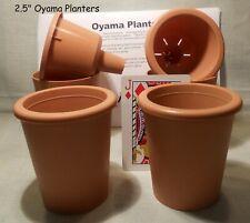 Oyama Planter 2 ½ � terracotta brown self watering pots African violet Set of 4