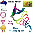 New Rabbit Harness with Leash Lead Adjustable Pet Cat Dog Small Rainbow Collar
