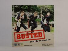 BUSTED, WHAT I GO TO SCHOOL FOR, 904, EX/G, 3 Track, CD Single, Picture Sleeve,