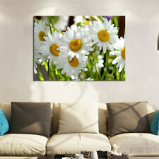 DIY Diamond Painting Embroidery Decor Full Drill White Daisies Brand New