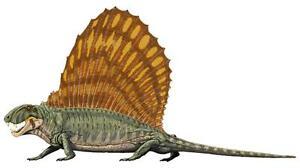 Autocollant sticker dinosaure dino jurassique deco enfant chambre Dimetrodon