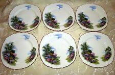 Royal Vale Country Cottage servizio 6 piatti dolce 16 cm porcellana inglese
