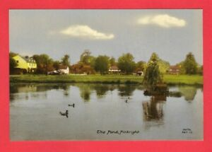 Vintage Colour Postcard ~ The Pond, Pirbright - Frith's Series Reigate PBT.17