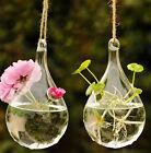 Flower Hanging Vase Glass Planter Plant Terrarium Container Home Wedding Decor