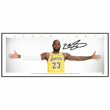 LEBRON JAMES LOS ANGELES LAKERS MINI WINGS SIGNED FRAMED NBA POSTER PRINT
