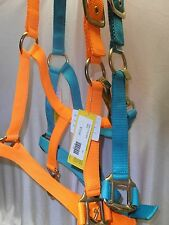 Choice Teal Green Neon Hunting Orange Heavy Duty Nylon Horse Adjustable Halter