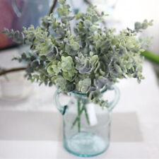 Getrocknet Natürlich Eukalyptus Zweige Blätter Blumenschmuck Zimmer Dekoration