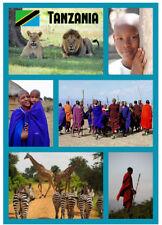 TANZANIA, AFRICA - SOUVENIR NOVELTY FRIDGE MAGNET - GIFTS / FLAGS / XMAS / NEW