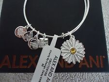 Alex and Ani Charity By Design DAISY Shiny Silver Bangle New W/ Tag Card & Box