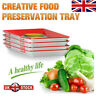 Creative Food Preservation Tray Healthy Kitchen Tools Fresh Storage Container *