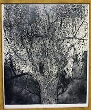 Leonard Baskin Original Portfolio Print Signed Woodcut 20th C. American Artwork