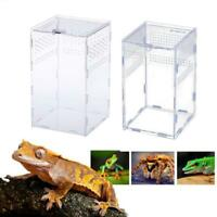 Acrylic Box Insect Reptile Lizards Spider Snakes Transport Breeding Live Feeding
