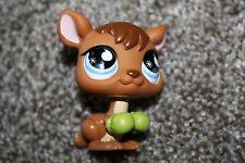 Littlest Pet Shop Kangaroo #682 LPS Toy Blue Tear Drop Eyes Boxing Gloves Hasbro