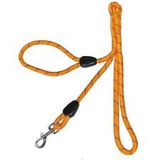 Longue  LAISSE Orange  pour CHIEN  - 150 cm