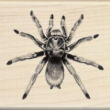Inkadinkado Wood Stamp, Tarantula Spider Scrapbooking Creepy Bug