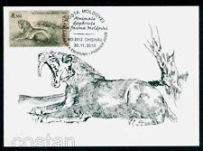 2010 Homotherium,scimitar cat,Prehistoric/extincted animal,Moldova,FDC Maxi card