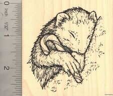 Christmas Ferret with Candy Cane Rubber Stamp ( Carmel Corn) K50205 WM