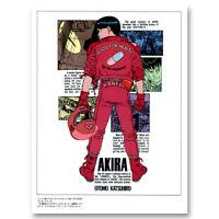 Hot NEW Classic Movie Akira Red Fighting Fabric Poster Art TY264 20x30 24x36 Inc