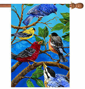 Toland Birds on Blue 28 x 40 Colorful Bird Branch House Flag