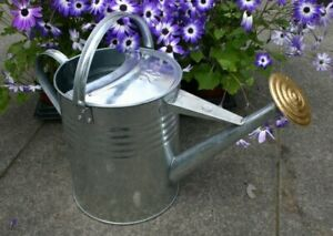 LARGE Garden Galvanised Metal Steel Watering Can 9 Litre Brass Rose GALVANISED