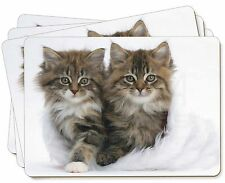 Kittens in White Fur Hat Picture Placemats in Gift Box, AC-189P