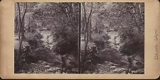 Vintage/Antique 3D Stereoview Card - Dhoon Glen, Isle of Man