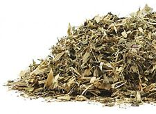 Blessed Thistle (Cnicus bendictus) c/s ~ Organic, 1 oz.
