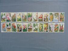 Carreras Full Set of 24 Orchids In Very Good Condition
