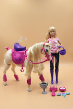 Muñeca y caballo Barbie Champion Tawny Horse & Doll