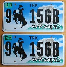 Wyoming 2009 BIG HORN COUNTY TRUCK License Plate NATURAL PAIR # 9 156B