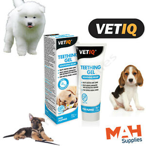 VETIQ Puppy Teething Gel Soothes Sore Gums Helps Unwanted Chewing from 4 Weeks+