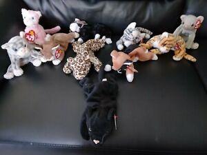 Ty Beanie Baby cat Bundle X10