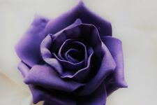 10 Plain Wedding Rose & Leaf Buttonholes - All Colours With Pins
