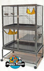 PRE-SALE ONE WEEK ONLY FERRET KINGDOM CAGE FOR RATS & FERRETS 1.25cm BAR SPACING