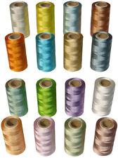 16 Rayon Macchina Per Cucire Rocchetti Di Filo 16 Diversi Colori AP