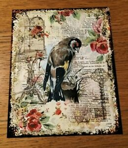 GOLDFINCH, RETRO VINTAGE PAPER EFFECT,WALL ART PRINTED METAL SIGN/WALL ART