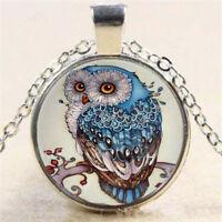 Owl Beautiful Photo Cabochon Glass Tibet Silver Chain Pendant Necklace