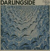 Darlingside - Birds Say [CD]