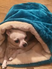 PUPPY DOG TEAL AND CREAM PET CAT BED SNUGGLE SACK - VIEW SELLERS OTHER ITEMS!!