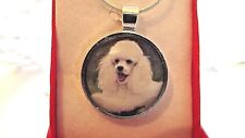 WHITE POODLE PHOTO PENDANT CHARM  24 INCH SILVER PLATED CHAIN GIFT BOX BIRTHDAY