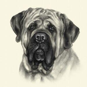 Dog Show Ring Number Clip Pin Breed - English Mastiff