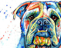 British Bulldog art print painting English Bull Dog Gifts - stocking filler