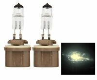Halogen 880 27W 3300K Stock Two Bulbs Head Light Replacement ATV UTV Bike Lamp
